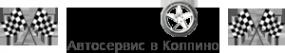 Логотип компании Pit Stop