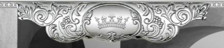 Логотип компании Platinium