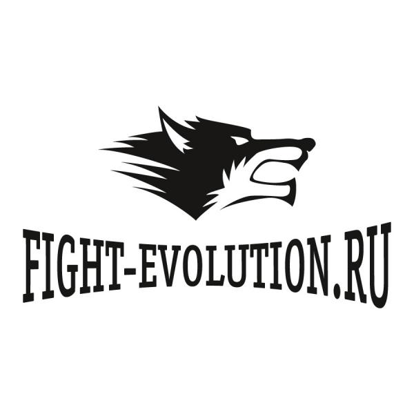 Логотип компании Fight-Evolution