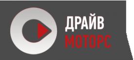 Логотип компании Драйв Моторс