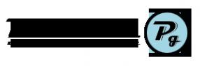 Логотип компании Platinum garage