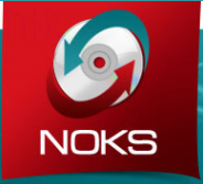 Логотип компании Нокс
