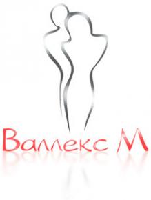 Логотип компании Валлекс М