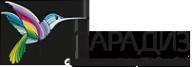 Логотип компании Парадиз