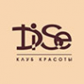 Логотип компании DiSe
