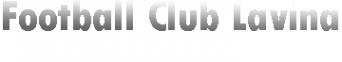 Логотип компании Лавина
