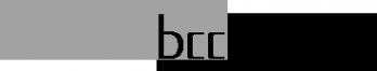 Логотип компании Би Питрон