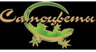 Логотип компании Самоцветы