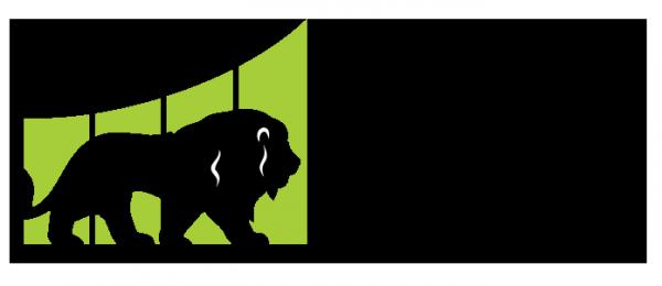 Логотип компании Real Lion